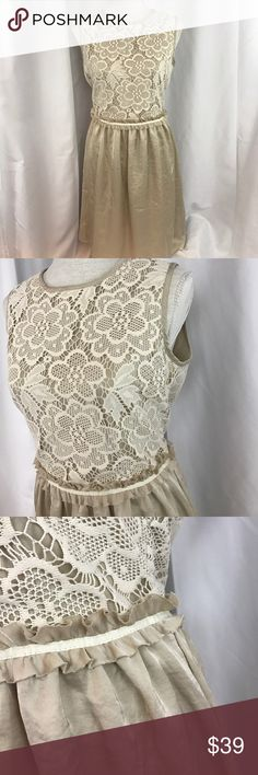 "NWT The Limited sz8 tan/cream lace top dress... NWT The Limited sz8 tan/cream lace top dress...is lined...zips up back...18.5"" armpit to armpit..15"" across waist...30"" armpit to hemline... The Limited Dresses"