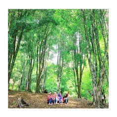 Noviyana Shiali with friends on the forest