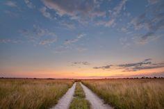 Take the road less travelled...The Kalahari by Mark Dumbleton. #Africa #Botswana #Travel #Safari