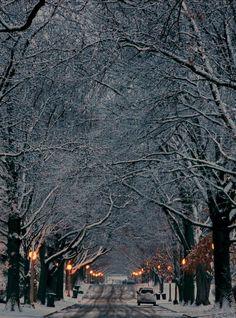 December - Champaign, Illinois