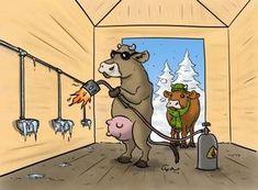 Tränken vor Frost schützen: Wasser ist das wichtigste Futtermittel aller Nutztiere – auch im Winter. Farm Animals, Water