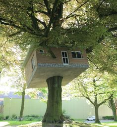Most Beautiful Pages: Tree House Art,Belgium