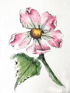 """Original artwork of a pink rose rendered in pen, ink and watercolor. It is titled """"Pink Rose With Wide Leaf"""" and is signed and dated at the bottom with the title on the back. The pink watercolor rose is done in warm pink colors with a hint of burnt umber and viridian hues toward #watercolorarts"""