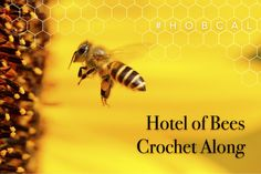 Hotel of Bees Crochet Along: - All you need to know to join in the fun. Crochet Bee, Crochet Toys, Bee Wings, Angel Wings, Prayer Shawl, Queen Bees, Knit Patterns, Quilts, Join