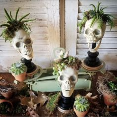 Outdoor Halloween, Easy Halloween, Halloween Crafts, Hanging Succulents, Succulents Diy, Cheap Halloween Decorations, Halloween Decorating Ideas, Halloween Displays, Holiday Decorations