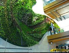 """Patrick Blanc: """"Vertical garden"""", Icon Hotel, Hong Kong"""
