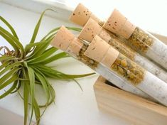 Organic & All Natural Chamomile Eucalyptus Herbal Bath Salt Test Tubes. (Thrive Bath Affirmations) H Beauty Care, Diy Beauty, Vida Natural, Natural Cosmetics, Cute Crafts, Bath Salts, Bath Bombs, Bath And Body, Gift Wrapping