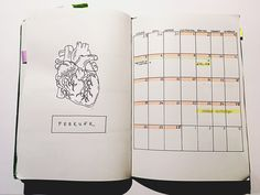 Bullet journal • Monthly log • february • anatomy heart • bujo