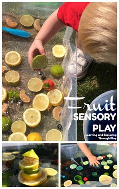 Sensory Fruit Water Play Ideas for Early Years Water Play Activities, Eyfs Activities, Nursery Activities, Toddler Learning Activities, Summer Activities For Kids, Infant Activities, Family Activities, Baby Garden Ideas, Water Tray Ideas Eyfs