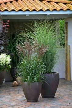 37 Flower Landscape Design Ideas to have a Colorful Garden -.- 37 Flower Landscape Design Ideas to have a Colorful Garden – 37 Flower Landscape Design Ideas to have a Colorful Garden – - Garden Troughs, Garden Planters, Garden Beds, Garden Grass, Garden Shade, Diy Garden, Outdoor Pots And Planters, Garden Projects, Planters Around Pool