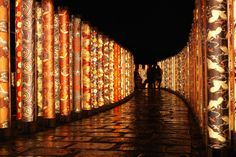 """15 Great Ways to Enjoy Kyoto on a Budget 