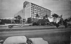 Searchable collections of manuscripts, war records, historic images, vital statistics, audio and video recordings from the State Library and Archives of Florida. Hollywood Hotel, Hollywood Florida, Miami Vice, South Florida, Louvre, Street View, Memories, Travel, Image