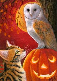 Bengal cat barn owl jack o lantern moon Halloween fall autumn OE ACEO print art  | eBay