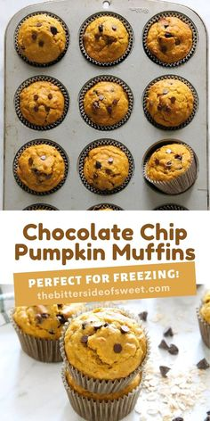 Easy to make Chocolate Chip Pumpkin Muffins! Filled with chocolate chips, pumpkin and spices! Perfect for freezing!   The Bitter Side of Sweet Egg Recipes For Breakfast, Delicious Breakfast Recipes, Breakfast Items, Breakfast Bake, Yummy Food, Pumpkin Coffee Cakes, Pumpkin Chocolate Chip Muffins, Pumpkin Dessert, Chocolate Chips