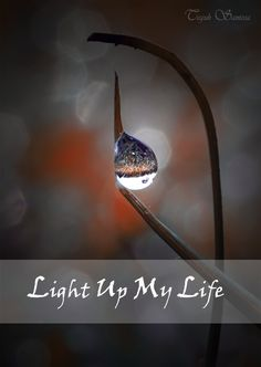 """""""You Light Up My Life"""" by teguh santosa"""