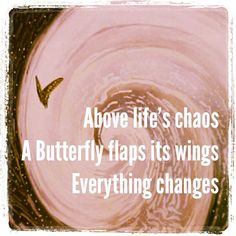 Butterfly Haiku  Above life's chaos A Butterfly flaps its wings Everything changes