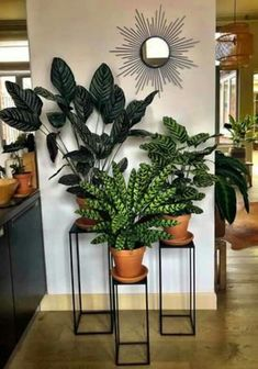 58 DIY Plant Stand ideas to Fill Your Living Room With Green.- 58 DIY Plant Stand ideas to Fill Your Living Room With Greenery living room decoration, plant stand decor, greenery decoration, plants indoor living room - Entryway Decor, Bedroom Decor, Entrance Foyer, Bedroom Bed, Plantas Indoor, House Plants Decor, Living Room Decor With Plants, Indoor Plant Decor, Living Rooms
