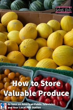 How to protect and store valuable produce in a totally unique and easy way.
