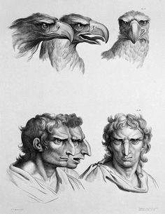 Hombre águila. Charles Le Brun.