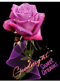 Good Morning Good Night, Night Quotes, Sweet Dreams, Roses, Lifestyle, Health, Pink, Health Care, Rose