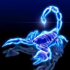 130 My Scorpio Sign Ideas Scorpio Sign Scorpio Scorpio Zodiac
