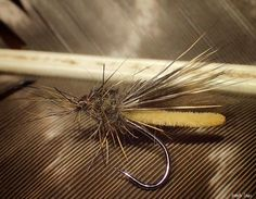 Stonefly variant! Partridge SUD2 #14 By Kenneth Einars
