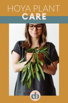 Learn how to care for your Hoya plant. Everything you'll need to know from light, to soil, and how to water. Clever Bloom #hoya #houseplants Hoya Plants, Plant Care, Inspiration, Style, Biblical Inspiration, Swag, Stylus, Motivation
