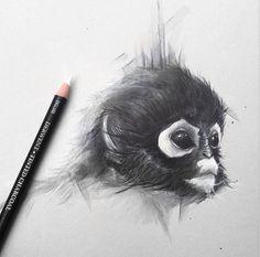 (8) DRAWING PENCIL (@DrawingPenciI) | Twitter