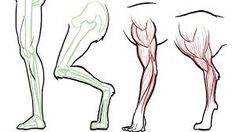 Kuvahaun tulos haulle HOW TO DRAW BACK OF LEG