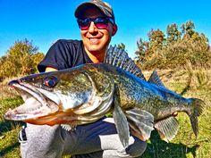 Magic Zander fishing day in Extremadura, Spain.
