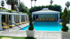 the viceroy palm springs - Google Search
