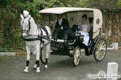 Foto de Carruagens Tomaselli - http://www.casamentos.com.br/carros-casamento/carruagens-tomaselli--e84511