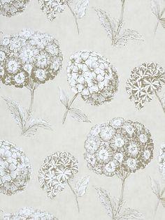 1000 images about hydrangea on pinterest hydrangeas