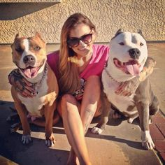 Chick's & pitbulls