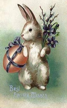 vintage postcard bunny