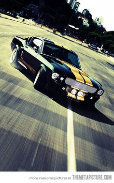 Ford Mustang Shelby GT500… Can't go wrong with a classic!