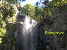 Fervenza: 1. Gran cantidade de burbullas que se forman ao precipitarse a auga dun río ou torrente por un desnivel brusco do terreo. Albiscábase a branca fervenza entre o verdor da fraga. sin. cachoada cachoeira, cachón, callón 2. Desnivel brusco ou pronunciado no leito dun río onde se precipita a auga. Nas paisaxes de montaña hai moitas fervenzas. sin. abanqueiro cadoiro freixa, ruxida, ruxidoira, salto, salto de auga, seimeira cf. catarata Montana, Rio, Waterfall, Outdoor, Greenery, Outdoors, Rain, The Great Outdoors, Waterfalls