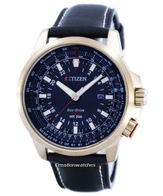 Citizen Promaster Eco-Drive GMT BJ7073-08E Men's Watch