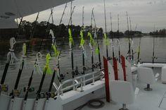 Getting Rigged up for striper fishing at Virginia Beach with Poacher Sportfishing Fishing Rigs, Sport Fishing, Fishing Boats, Striper Fish, Favorite Pastime, Saltwater Fishing, Virginia Beach, Kayaking, Tips