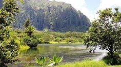 Ho'omaluhia Botanical Gardens – Honolulu | Best Campgrounds in Hawaii | Hawaii Camping Guide - Best Outdoor Spots To Camp | http://survivallife.com/best-campgrounds-in-hawaii/