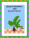 Square Numbers and Square Roots product from ATeachersIdea on TeachersNotebook.com