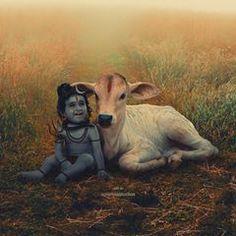 Rudra Shiva, Mahakal Shiva, Krishna, Shiva Angry, Lord Murugan Wallpapers, Baby Ganesha, Hindu Deities, Hinduism, Shiva Photos