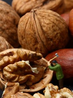nuts | Flickr - Photo Sharing!