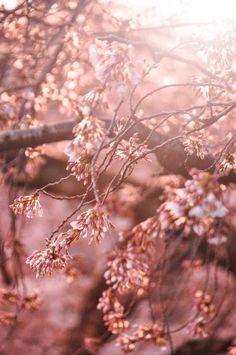 Photo by Zijun Lian