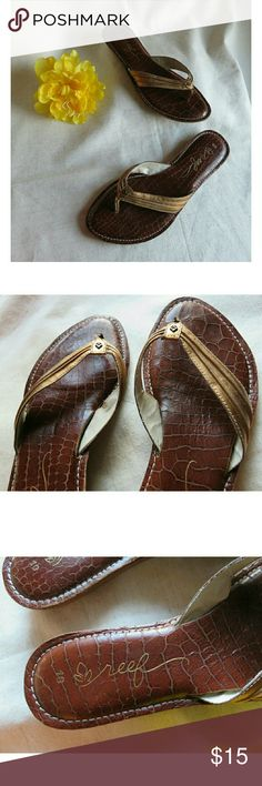 b9a4c24b1eac Reef Bronze Leather Cushion Flip Flops 10 Super cute flip flops from the  brand Reef.