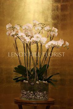 Orchids - Orchid Flower Arrangement                                                                                                                                                                                 More