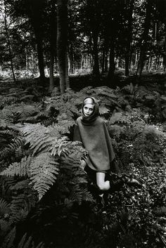 Twiggy in the bracken by Jeanloup Sieff