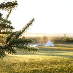 Teepee and airstream dreams by @lynneknowlton ! See more photos on the blog.