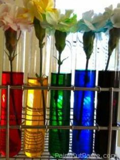 cool science stuff...
