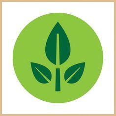 eve plant wall-e - Google Search